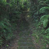 The trail to the Lost City (Ciudad Perdida) in Colombia