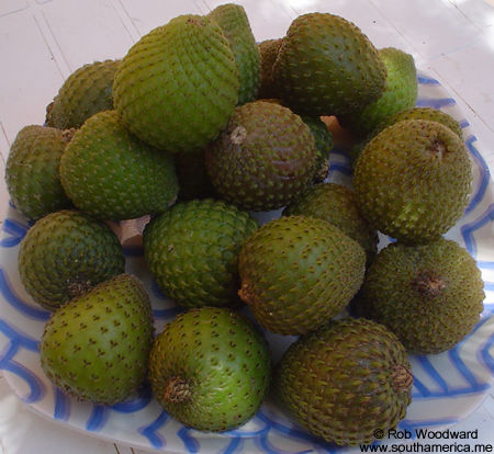 A bowl of copao fruit
